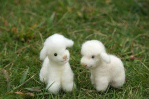 羊毛フェルトの種類と選び方