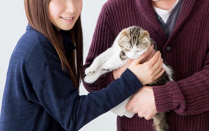 日本生活環境支援協会 | 犬・猫ペットブリーダー